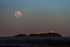 South Solitary Island, Moon and Bird (Falke in Oz) Tags: moon south solitary island coffs harbour coast look me now headland sigma f28 70200 mm
