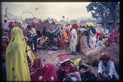 at the Pushkar fair (kuuan) Tags: scan slide pushkar pushkarfair india rajasthan 1982 film colorfilm