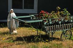 2071 the virgin known as Mary (Violentz) Tags: virginmary thevirginknownasmary mary virgin mother holymother blessedmother blessed hailmary handmaidenofthelord statue lawnstatue madonna holy icon god bible stjoseph babyjesus jesus ourlady ourladyofgrace ourladyofguadalupe ourladyoflourdes ourladyoffatima miriammotherofisa motherofgod bethlehem israelite jew nazareth galilee christianity catholic religion thetheotokos heymarywatchagonnanamethatprettylittlebaby