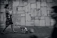 Bali 20 (kruser1947 (all killer no filler)) Tags: bw blackwhite monochrome bali indonesia street woman baby dog