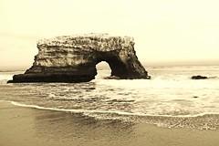 Natural Bridges State Beach, Santa Cruz (RASH Photography....) Tags: beach ocean pacific ca california santa cruz outdoor sea shore water nature