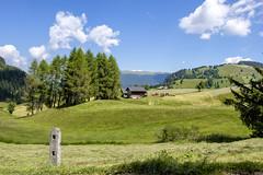 Alto Adige (Italy) - Alpe di Siusi (Massimo Battesini) Tags: nationalgeographic worldtrekker fujifilmxt1 fuji xt1 fujixt1 fujifilm finepix fujinon fujinonxf18135 fuji18135 fujifilmfujinonxf18135mmf3556rlmoiswr montagna montagne dolomiti mountains montaas berg dolomite dolomitas dolomites alpi alpes alps alpen italy italia italie italien trentinoaltoadige europa europe siusi seiseralpe alpedisiusi seiseralm castelrotto it fattoria farm factory