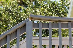 Warped Nail Loose (Gabriel FW Koch (fb.me/FWKochPhotography on FB)) Tags: boards railing stairs outside canon bokeh telephoto tree leaves sky sun sunlight lseries eos dof