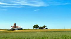 Farm Fields (duaneschermerhorn) Tags: farm farmhouse silo barn trees field green blue white red sky clouds landscape