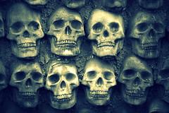 Skull wall. (Joseph Skompski) Tags: crownsvillemd crownsville maryland renaissance marylandrenaissancefestival renaissancefestival renaissancefair skulls skull macabre noir