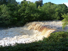 Aysgarth Falls, North Yorksire