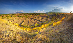 HIGH AND DRY,,,, (ManButur PHOTOGRAPHY) Tags: travel light sky bali panorama cloud mist mountain grass stone clouds canon indonesia landscape photography eos three scenery exposure pano explorer grain line explore filter crater caldera 7d dslr filters polarizer 1022mm hitech hdr tonal treking threes mountainscape canonefs1022mmf3545usm tulamben polarize f3545 canon7d manbutur manbuturphotography