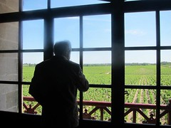 Alfred Tesseron overlooking Pontet Canet