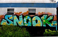 SNOOK. (NTHESTREETS) Tags: streetart art train graffiti orlando florida graf railway trains vandalism boxes spraypaint boxcar graff aerosol freight boxcars vandals snook freights