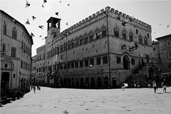 Perugia I (salvatore carvelli) Tags: city italy art architecture canon italia arte palace palazzo perugia architettura umbria citt 1740l canon1740