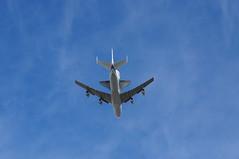 Endeavour Flyover in Berkeley (taromatsumura) Tags: ca airplane berkeley sora spottheshuttle