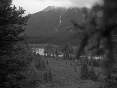 a peek (Martin<3s4x5) Tags: park canada slr 120 film speed 35mm lens leaf 645 with view prism canyon hike scan iso trail bronica alberta frame shutter roll banff medium format vs grip electronic finder ilford fp4 f28 ae johnston provincial 125 dpi 75mm eii effective aspherical 2400 etrs zenza img001 zenzanon ~45mm