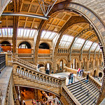 London Museum Fisheye Architecture