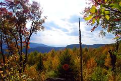 Bear Heaven (AppalachianAfro) Tags: blue trees mountains fall landscape ridge westvirginia nnp bearheaven