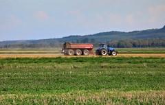 quebec farm scene (Mr.  Mark) Tags: tractor color colour field truck work photo quebec farm stock corm markboucher