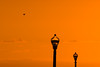 Ocean Grove Dawn i (nosha) Tags: ocean new sea usa sun beach beautiful beauty sunrise dawn newjersey grove nj atlantic shore jersey monmouth monmouthcounty jerseyshore 2012 lightroom oceangrove d600 oceangrovenj nosha 70200mmf28 nikond600 oceangrovenewjerseyusa