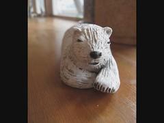 2012 polar bears (danahaneunjeong) Tags: bear polar