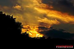 Tramonto del 05-10-12 (oraziopuccio) Tags: blue trees sunset sky italy sun tree beach nature silhouette night clouds landscape nikon tramonto nuvole nuvola natura cielo sicily sole rosso nero notte sicilia nationalgeographic palazzoloacreide nikon1855 oraziopuccio mygearandme nikond3100