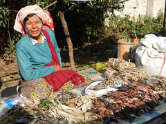 Kalaw (simo2582) Tags: people asian asia burmese shanstate shan birma birmania burma myanmar market kalaw human trade typical hilltribes tribes mountain hillstation village countryside travel reise blick unterwegs world traditional 5daysmarket groceries street woman