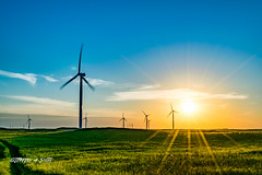 DSC_2127 (Jeffery A. Smith) Tags: bottineau northdakota nikond3300 nikon windtower wind renewable sunset field windfarm electric electricity windpower turbine windmill