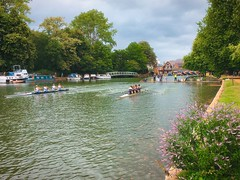 Coxed fours on the Isis (Cycling Man) Tags: oxford landscape river thames water