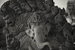 Ganeshotsav 2016 (soumitra911) Tags: ganpati ganeshotsav ganesha bappa moraya pune mumbai india idols