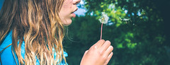 About time (aileyh3) Tags: moment dandelion nature green breeze soothing color photography colorful wandering