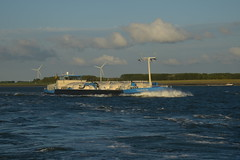 Tarsis DST_8401 (larry_antwerp) Tags: tarsis 06004050 binnenvaart nederland netherlands schip ship vessel        schelde
