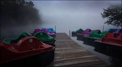 Waiting in a Cloud - 72/100 (Firery Broome) Tags: landscape waterscape latesummer earlymorning fog trees paddleboats lake dock foggymorning lowclouds cloudcover stilllife glassywater inkywater reflections woodendock mistymorning gray red green purple blue brown stillwater oldforge lakeserene adirondacks newyork usa travel cellphone phonephoto iphone iphone5s iphoneography phoneography nature earthnature iphonenature naturelovers statepark 100x2016 100xthe2016edition image72100 grayclouds graysky grayfog 365