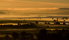 Misty morning over Beauly Firth (Matthias-Hillen) Tags: sunrise scotland schottland united kingdom grosbritanien beauly invernessshire firth firthofbeauly beaulyfirth morayfirth bridge brücke kessockbridge a9 rusty matthias hillen matthiashillen rot himmel wolken sky clouds red sonne sun sonnenaufgang morgens morning früh early landschaft landscape nebel nebelig fog foggy mist misty bäume trees silhouette uk