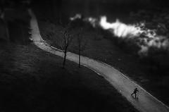 EASY RIDER (oskarRLS) Tags: rider boy blanco y negro black and white street