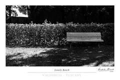 Lonely Bench (Nicol Vedele) Tags: toscana horti leonini san quirico dorcia valdorcia bw blackwhite bn black canon 5d tuscany