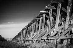 "No. 4 (Week 12/52) - ""Explored"" September 17, 2016 (milmonfharrison) Tags: outdoor blackandwhite landscape railroadtracks railroad trestle 7003000mm f4556 california sacramento woodland countyrd22 perspective vanishingpoint vignette yolobypass"
