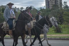 DSC_5206 (neyde zys) Tags: bandadabrigada brigadamilitar desfilefarroupilha gauchos indumentaria prendas tradicao