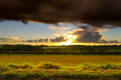 Preston on the hill before the rain (stumpyheaton) Tags: sunset cloudy