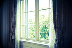 window (sakanarts) Tags: ar olympus kern 25mm ep2 paillard switar