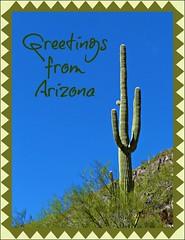 Postcard Perfect (Oh Kaye) Tags: arizona cactus symbol saguaro postcardperfect sliderssunday tp348