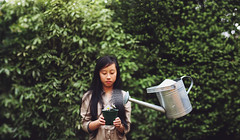 gardener (annie.hb) Tags: plant green nature water photoshop garden photography levitation pot daisy conceptual watercan levitate potplant rosiehardy