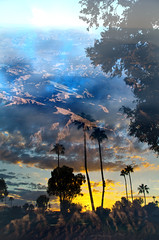Arizona (MattGerlachPhotography) Tags: sunset arizona mountains desert doubleexposure palmtrees mattgerlachphotography