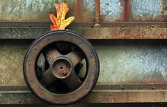 Wheel With A Flair For Fashion (rickhanger) Tags: wheel leaf rust machine rusty rickhanger rickhangerphotography