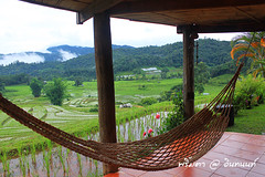 PhamonVillage-DoiInthanon-ChaengMai-Trip_By-P r i m t a a_E10886166-020