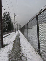 10/365: Morning Snow (jchants - offline for a bit) Tags: street trees winter snow weather fence frozen chainlinkfence snowfall telephonepoles day10 myneighborhood hff project365 10365 fencedfriday