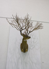 Untitled part     Deer Taxidermy, Tree.     Installation     130 X 100 X 130 (cm)  52 X 40 X 52 (inch)