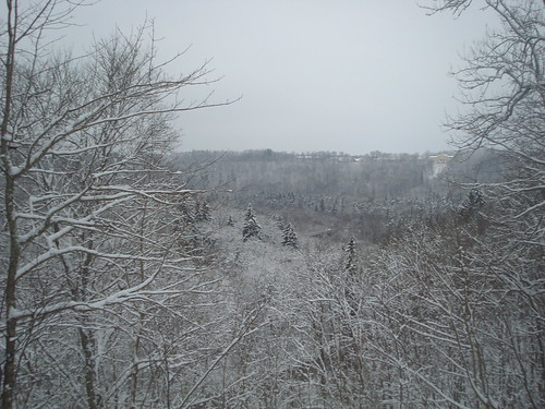Wiew to Turaida in winter