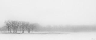 Gray's Lake Blizzard | 020/365 2013