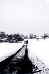 Men And Dogs (Tristan Blaskowitz Photography) Tags: schnee winter snow streetart nature forest germany natur tamron wald f8 f28 weg wunderbar rheinlandpfalz schn iso640 wrrstadt 1750mm iso360 landstrase canon600d tristanblaskowitz