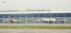Lufthansa and Asiana Airbus (A. Wee) Tags: shanghai  pudong  airport  china  pvg airbus a330 a380 lufthansa asiana