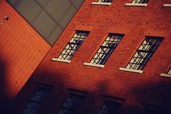 DSC_6309 [ps] - Bond, Stack Bond (Anyhoo) Tags: anyhoo photobyanyhoo holloway london england uk lowsun urban red brick manorgardens masonry