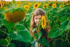 IMG_1043 (DavydchukNikolay) Tags:       kids kidsphoto kidsphotography happy happymoments flower summer photowithkids sunflower