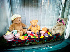 Teddy Bears' Picnic (garryknight) Tags: dorchester dorset lightroom london lumia930 microsoft nokia on1photo10 ononephoto10 photoshopelements cellphone mobile phone picnic shop shopwindow stuffedtoy teddybear toy window